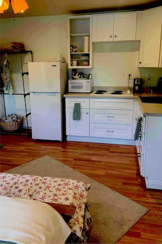 View of private studio from east side of house. Shows kitchenette w refrigerator/freezer, microwave, sink, stovetop, and small clothes rack.