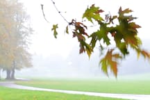 Monkton Park on a wet and windy autumn day
