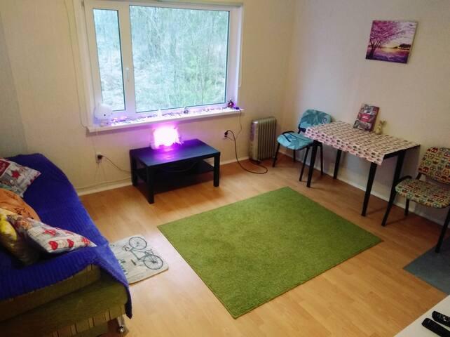 Уютная квартира у леса