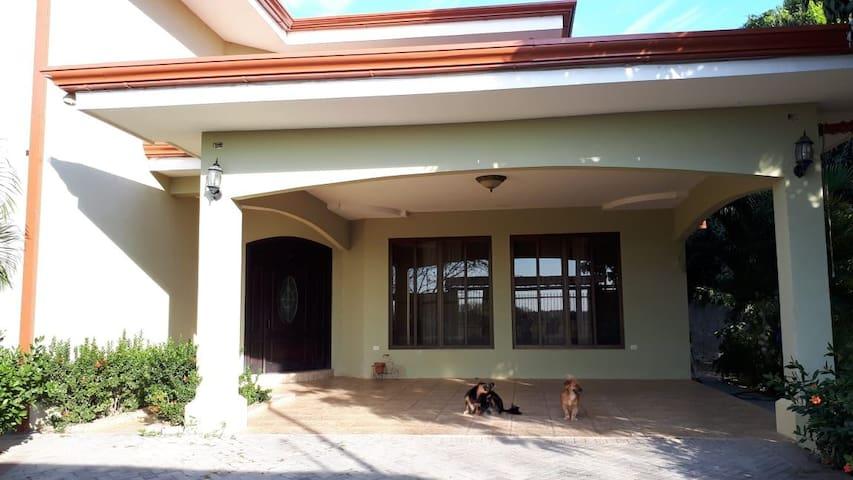 Doggy House Cañón