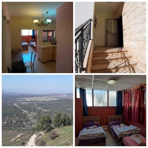 Pime location in the old city Tzfat ha'Ari st