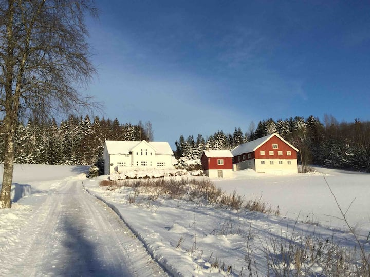 Idyllic farmhouse close to Hedmarksvidda, Hamar