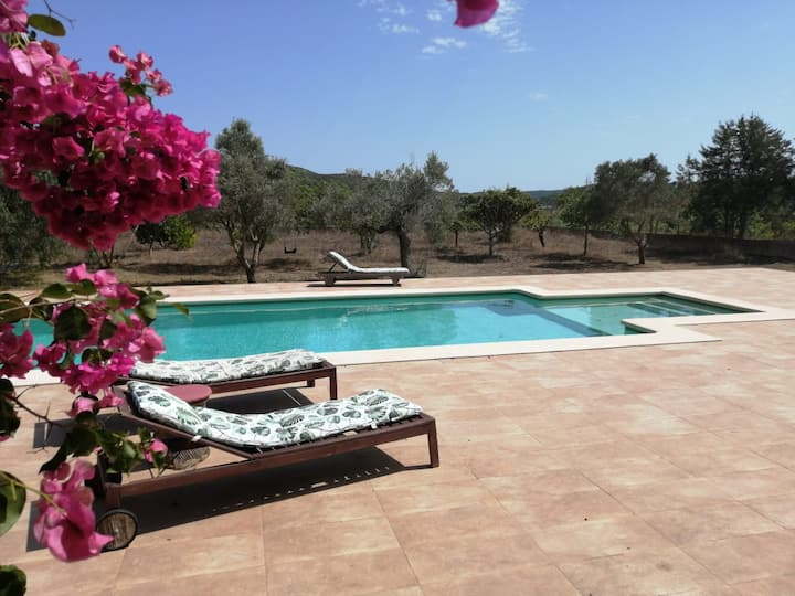 Spacious private villa with pool