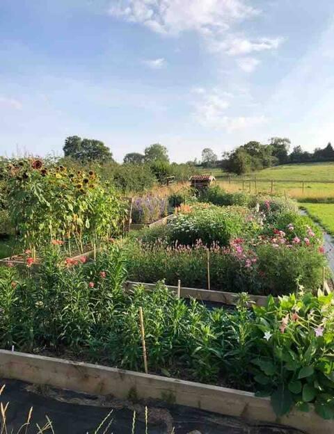The Garden Room - Studio on flower farm