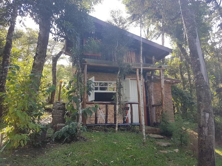 Chalé 3 em bosque de Araucárias.