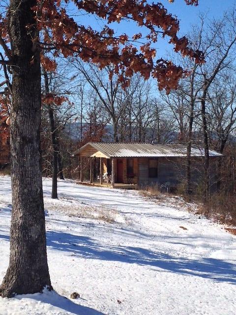 Cozy Cabin Getaway in the Woods #3