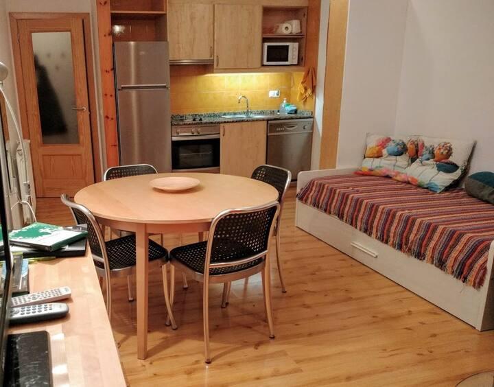 Acollidor i equipat apartament amb WIFI