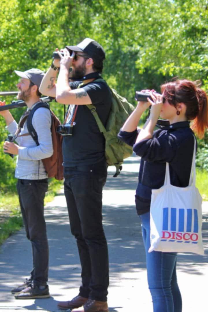 Birding along the trail