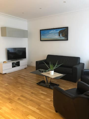 Living room with TV and sofa bed