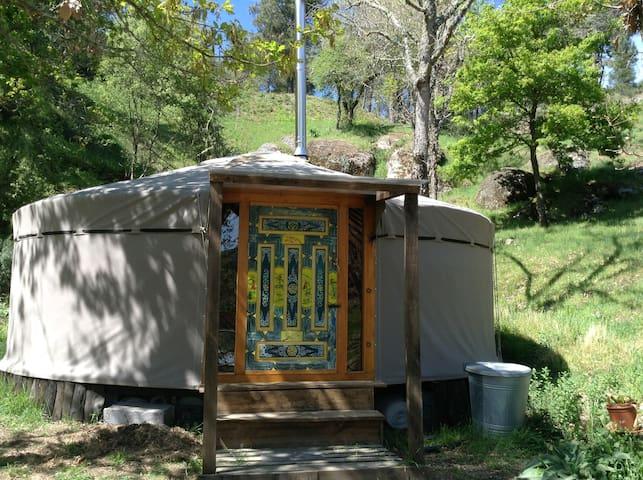 Eli's Yurt in Portugal - Várzea de Meruge - Tenda