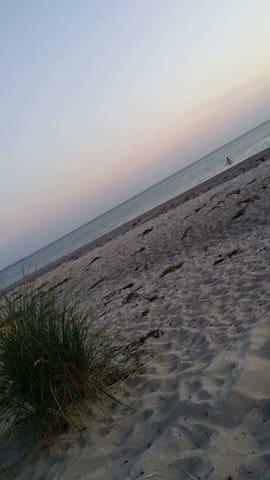 Stuga 100 m från havet.