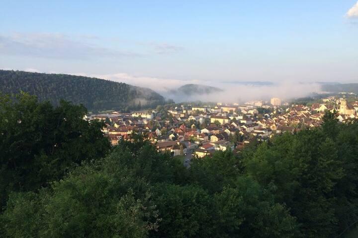 Traumhafter Weitblick bis in die Schweiz - Waldshut-Tiengen