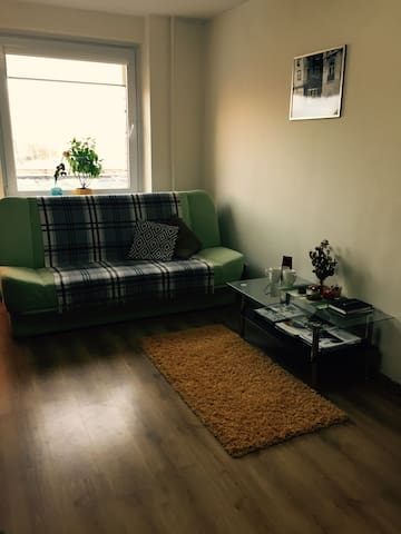 Cozy and warm apartment in a quiet part of town - Vilnius - Apartment