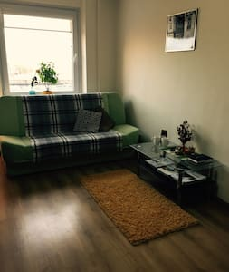 Cozy and warm apartment in a quiet part of town - Vílnius - Pis