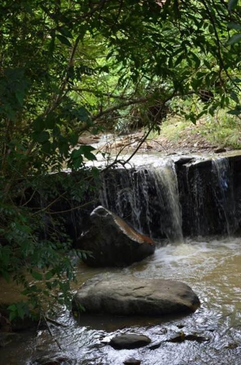Nature Retreat at Quinta Conciencia