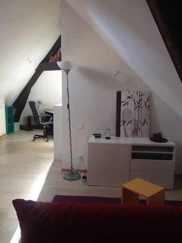 Charmant duplex au centre ville - Lons-le-Saunier - อพาร์ทเมนท์