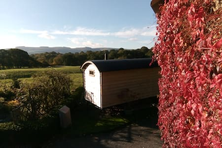 Secluded luxury Shepherd Hut - heart of Mid-Wales