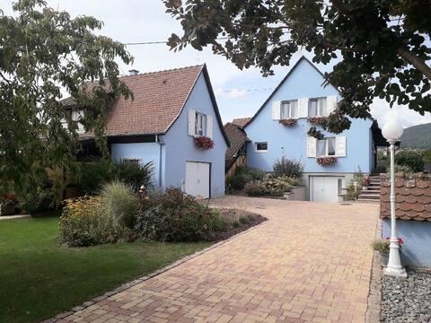 La petite maison bleue dans les vignes