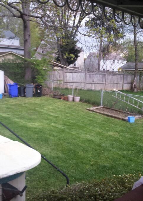 Side back yard