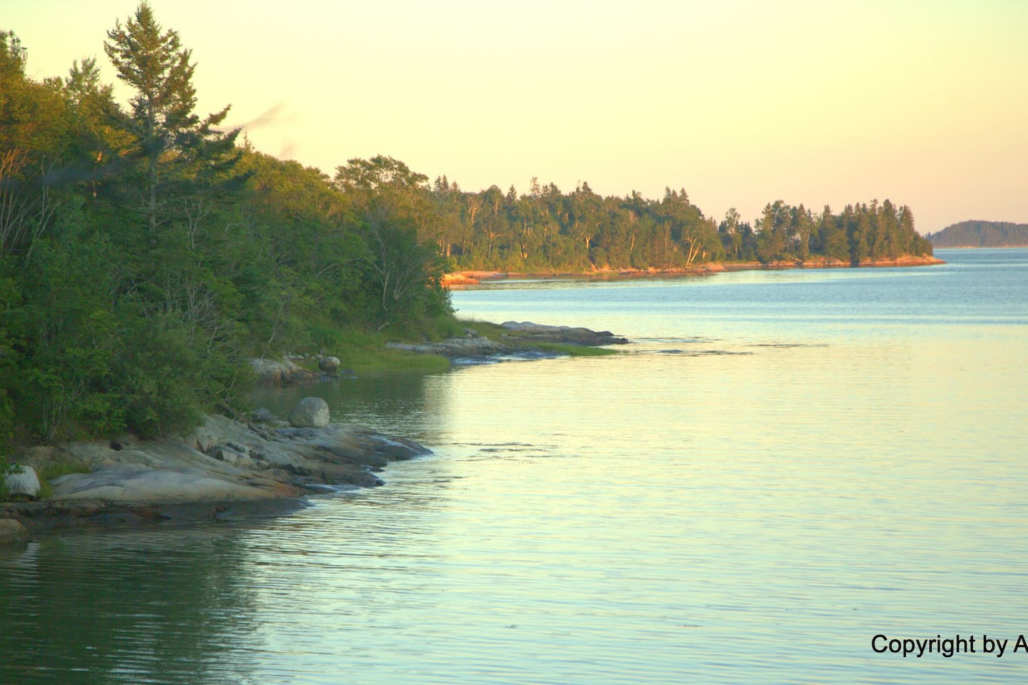 Part of our shoreline on this tidal cove, viewed from the end of the Point. At far right are islands out in Narraguagus Bay, and beyond them, the Atlantic.  (Taken by a guest in July 2018 and used by kind permission. Photo ©Arnold Dalene.)