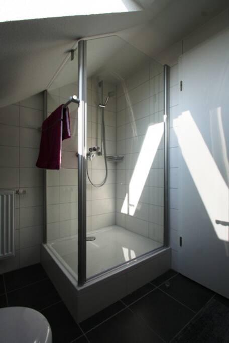 1. Badezimmer im Dachspitz