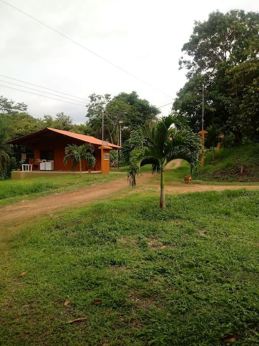 Casa Hills