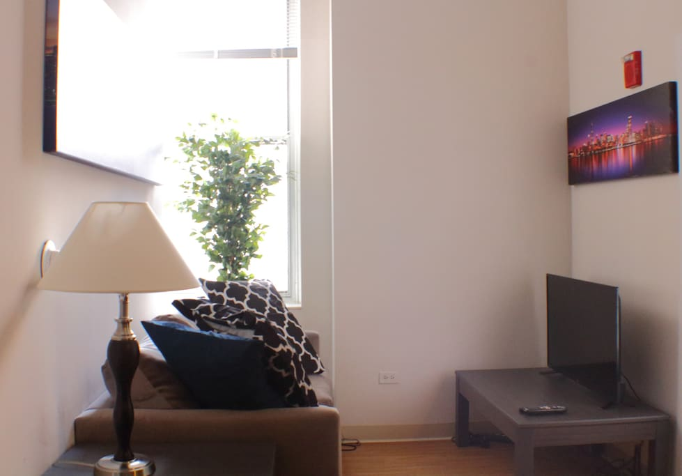 The living room, setup for viewing TV.  Please note using the sofa sleeper requires the guest to unplug the TV (and TV connections) and move the TV stand.