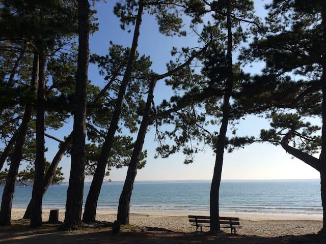 Maison tout confort à 100m de la plage du Cap Coz - Fouesnant - Casa