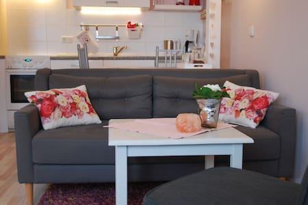 Rosenquarz Appartement für 2 Pers. - Reussenköge - Selveierleilighet