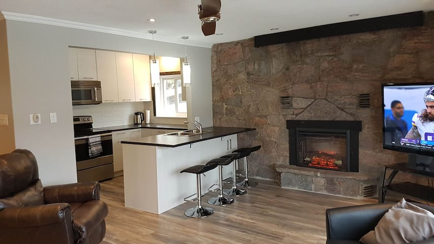 Kitchen open to Living room with Fireplace