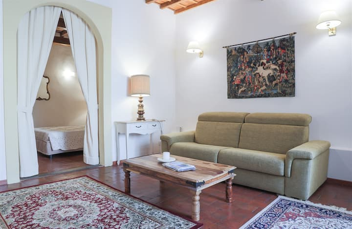 Pergola Fiorentina - Historical Center Apartment