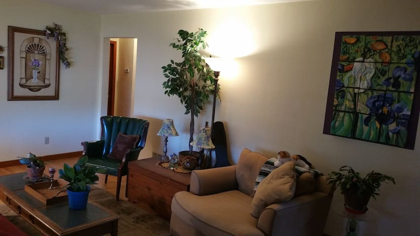 Relaxing room+ in Hometown, USA