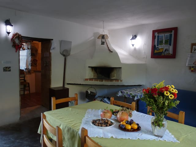 Enjoy real Italian countryside ! - Forcella - Casa