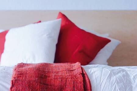 Down comforters and modern furnishings combine cozy and cool