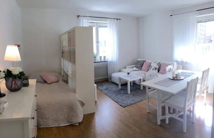 Mysig 1:a i centrala Helsingborg - Helsingborg - Wohnung