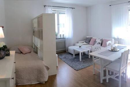 Mysig 1:a i centrala Helsingborg - Хельсингборг - Квартира
