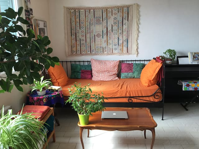 Chambres à louer Lyon 8