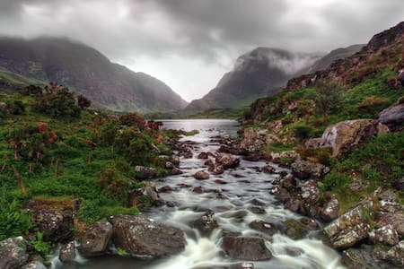 The Orchid (Gap of Dunloe)