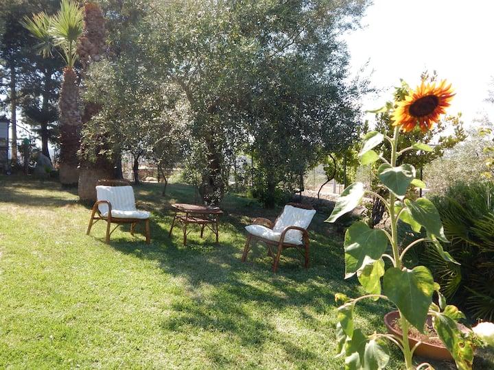 B&B Villa Azzurra Via del Calesse 28 Noto(SR)