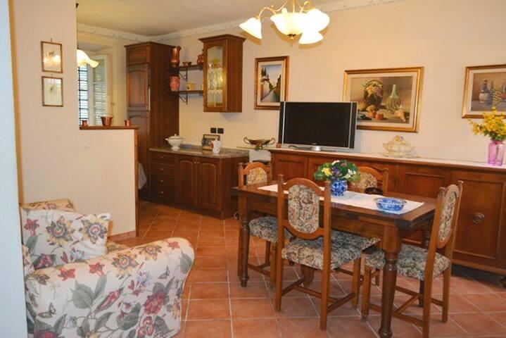 Casa di Irene. cozy apt wifi&garden - Lucca - Byt