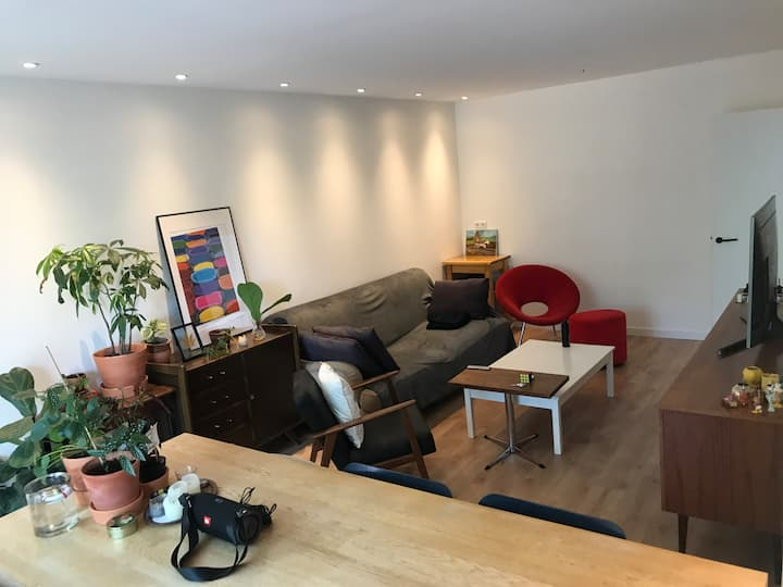 65 sq/m apartment, open kitchen, residential area.