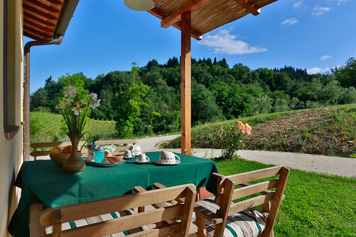 Wonderful holiday house with pool - San Casciano in Val di pesa - Byt