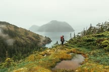 Tired of kayaking? Take a hike on our Alpine Trail (pictured) or our Forest Trail.