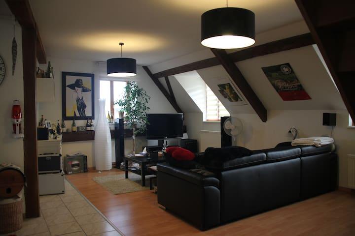 Appartement au coeur du vignoble alsacien - Beblenheim