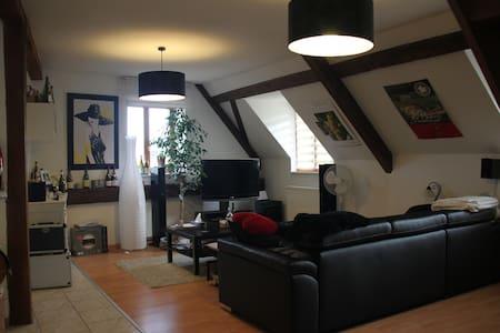 Appartement au coeur du vignoble alsacien - Beblenheim - Apartemen