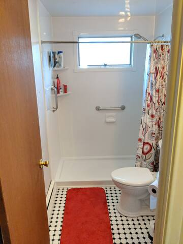 Recently updated shower with new pedestal sink and toilet