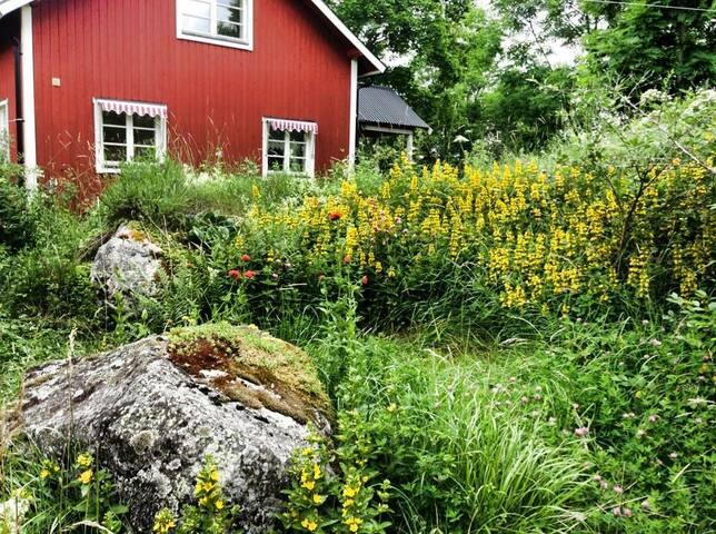Huset på kullen, The cottage on the hill