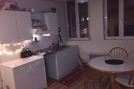Appartement centre Valenciennes - Valenciennes - Apartament