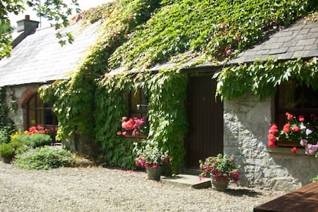 Charming Old World Cottage near Adare