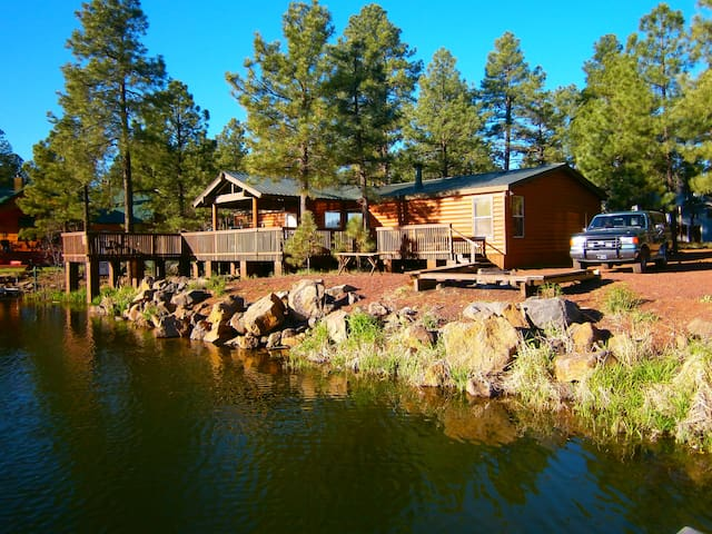 LAKEFRONT CABIN WITH 4 BOATS AND A  PRIVATE PIER
